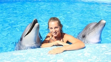 Side Swim With Dolphins