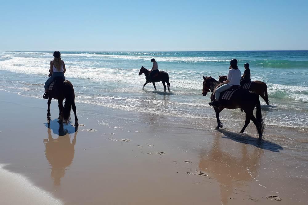Antalya Horse Riding