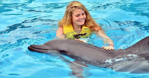 Marmaris Swim With Dolphins