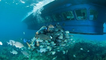 Marmaris Semi Submarine