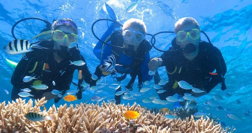 Sarigerme Diving