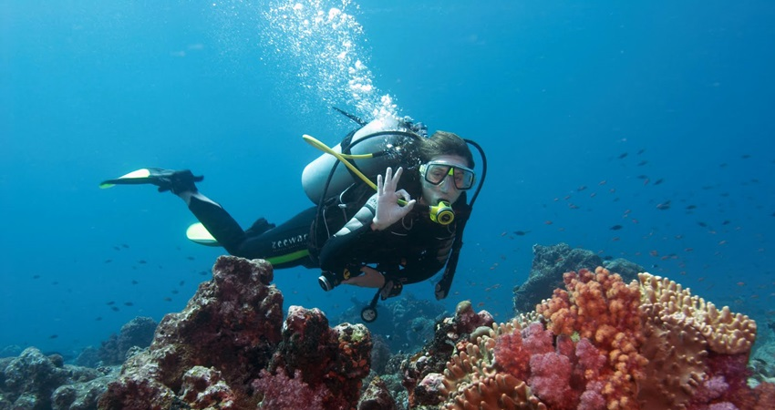 bodrum diving tour