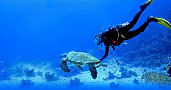 bodrum diving tour