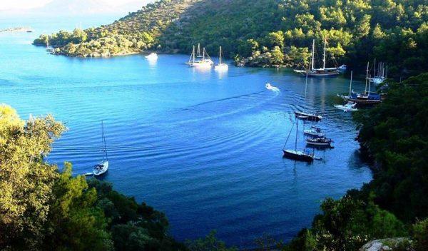 Gocek Market Boat Trip