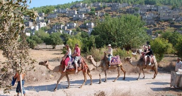 Fethiye Camel Riding