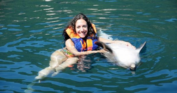 Sarigerme Swim With Dolphins