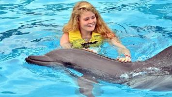 Sarigerme Swim With Dolphins