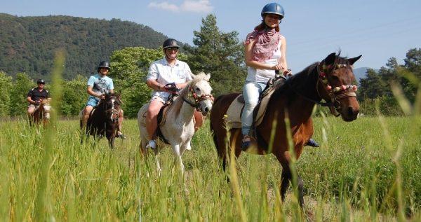 Bodrum Horse Safari