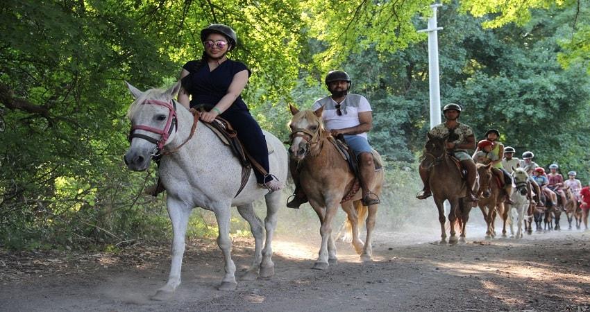 Alanya Horse Safari