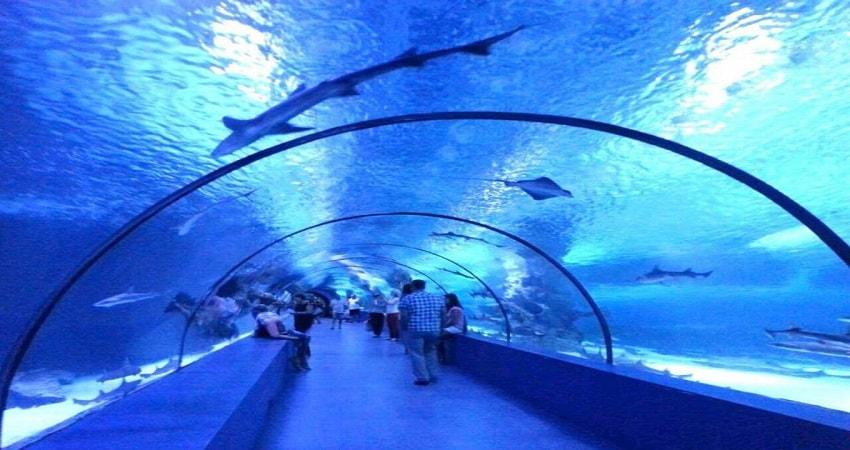 Kemer Antalya Aquarium
