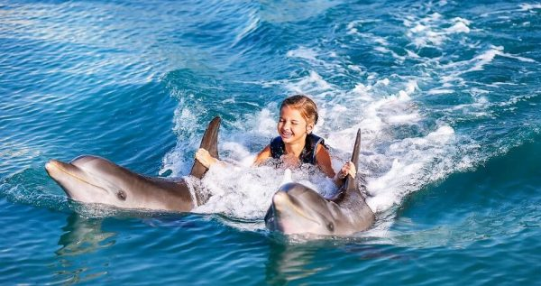 Kemer Swimming with Dolphins