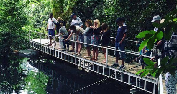 Kemer Fishing & Picnic Tour