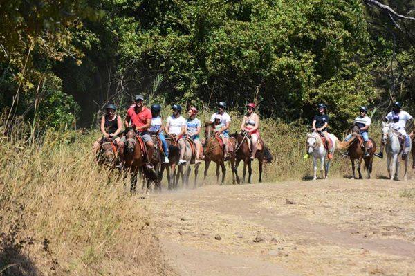 Didim Horse Safari