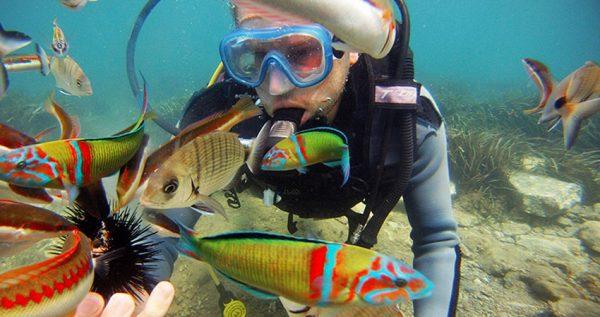 Kusadasi Diving Tour
