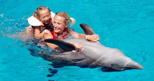 antalya swim with dolphins