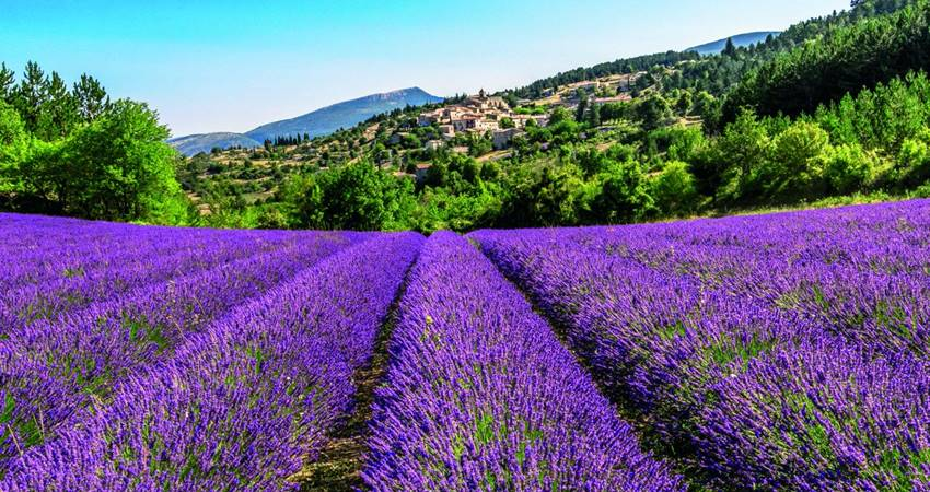 antalya salda lake and lavender gardens tour