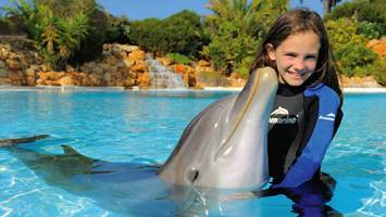 antalya swim with dolphins