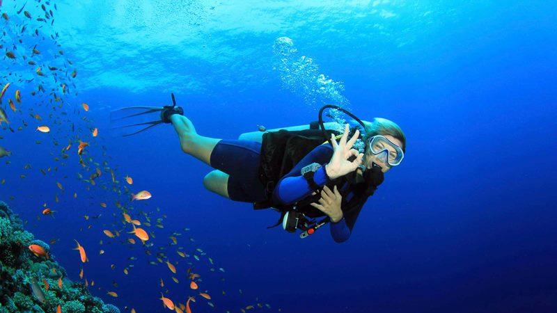 Scuba Diving İn Belek