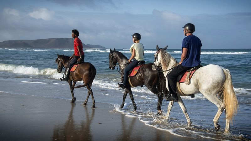 Horseback riding on the beach in Belek Antalya